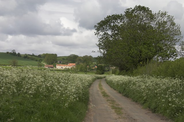 Aislaby from Aislaby Carr Lane