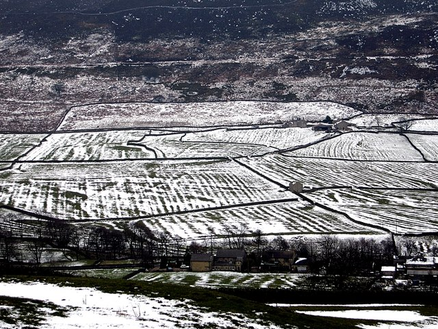 Mediaeval field patterns near Parceval Hall, Appletreewick