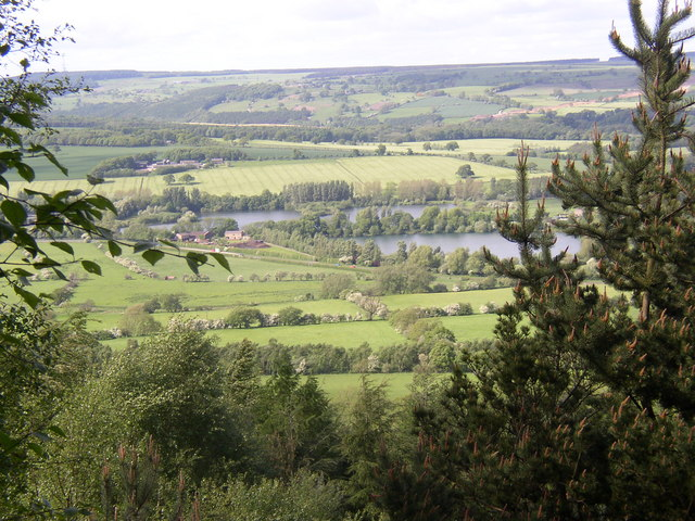 View of the Wharfe Valley from Chevin Country Park, Otley