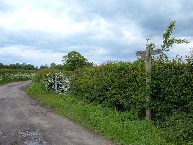 Carter Lane, Chelford