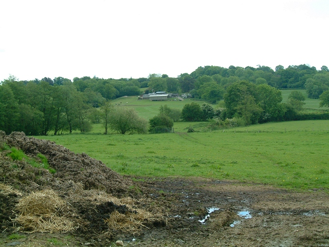 Bines Farm
