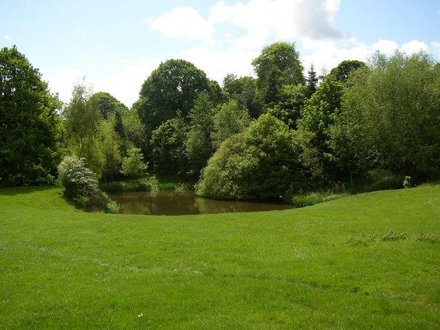 Pond on the Nun Brook, Clifton