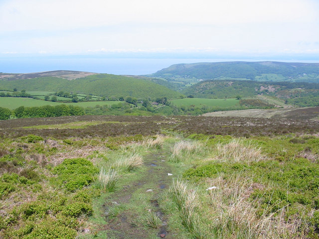 Path going north from Dunkery Beacon to Cloutsham Exmoor Somerset