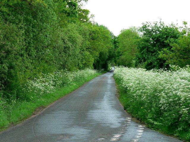 Arglam Lane