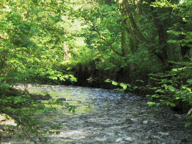 Bend in the River Clydach