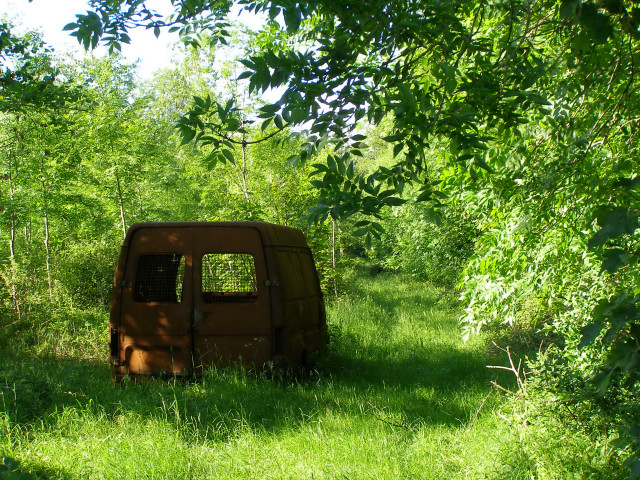 Burnt-out van at Charlton Furze