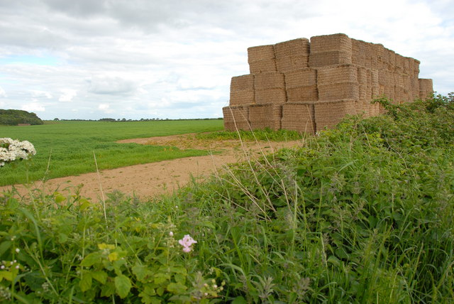 Haystack west of Burnham Market