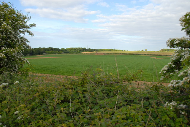 Fields south of Brancaster