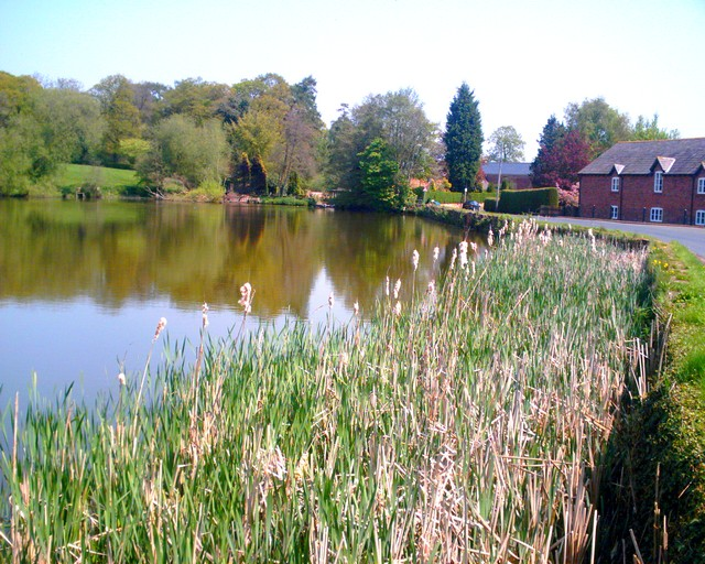 Oulton Mill Pool