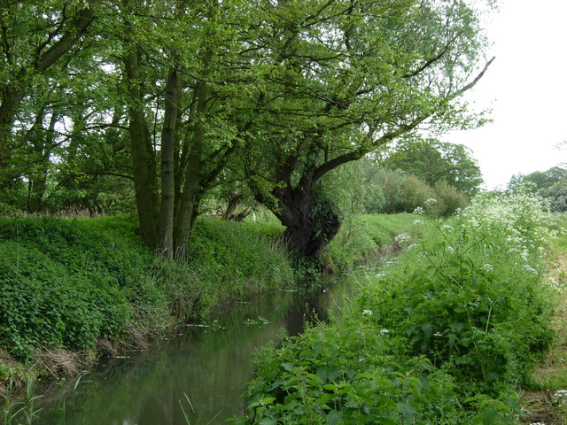 Minsmere River, Middleton