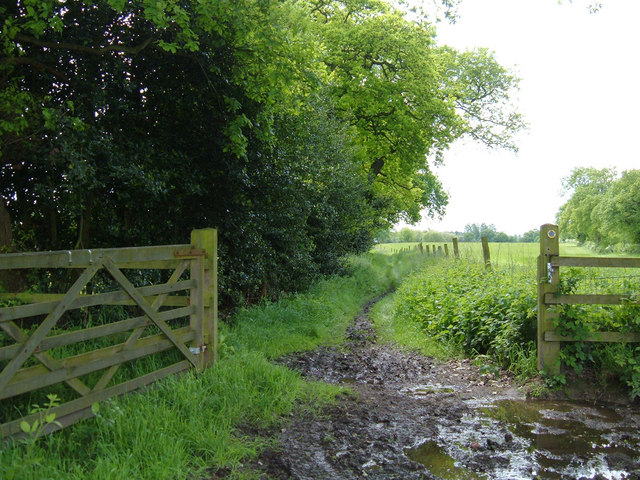 Bridleway near Over Peover