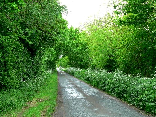 Arglam Lane near Sandhill Farm