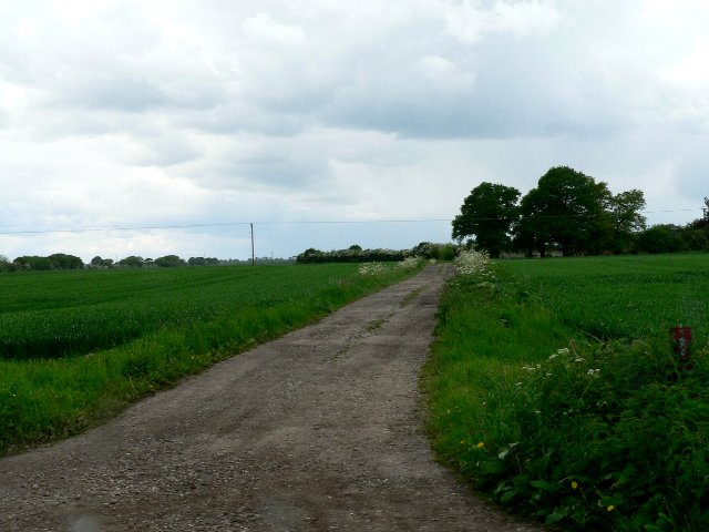 Track to Common Farm