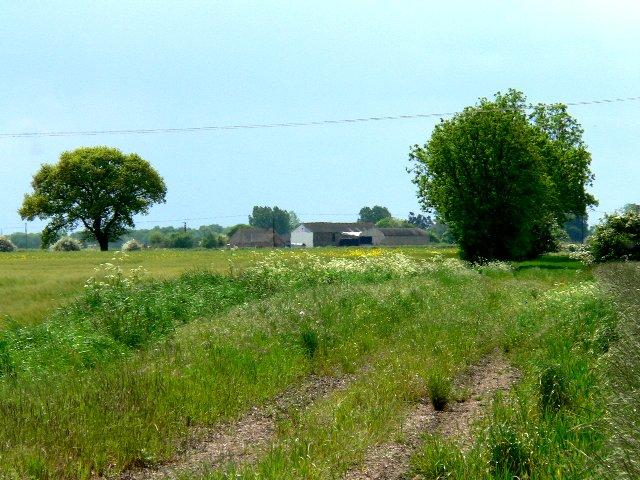 Arglam Lane Farm
