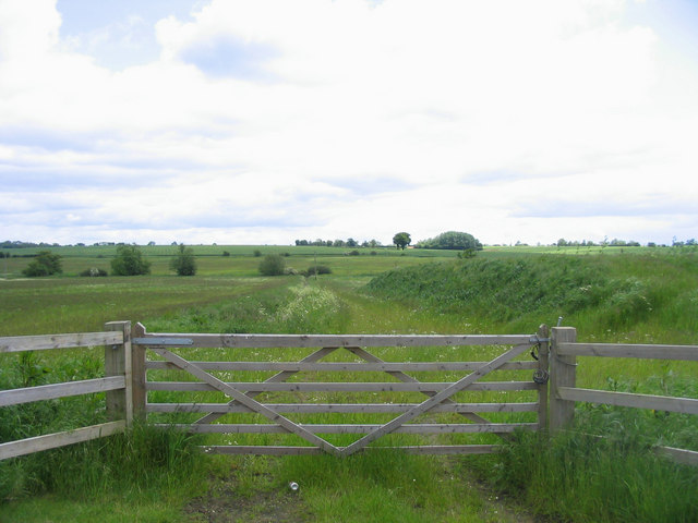 Cripsey Brook meadows, near Moreton