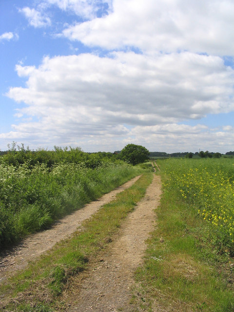 Course of Roman Road near Bovinger