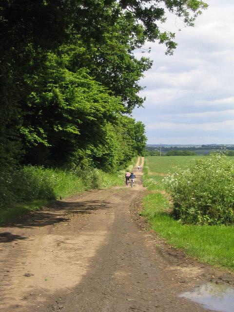 Mountain-biking in Essex!
