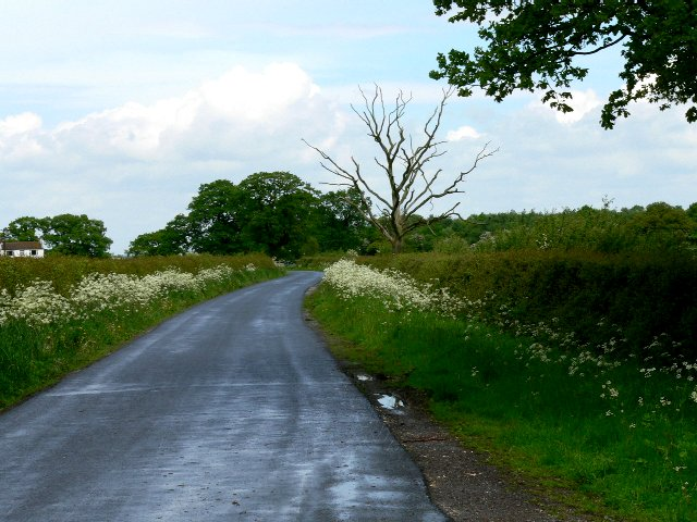 The Road North to Seaton Ross