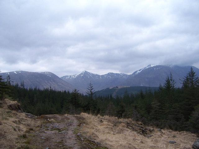 The path from Beinn Fhionnlaidh enters Invercharnan Forest