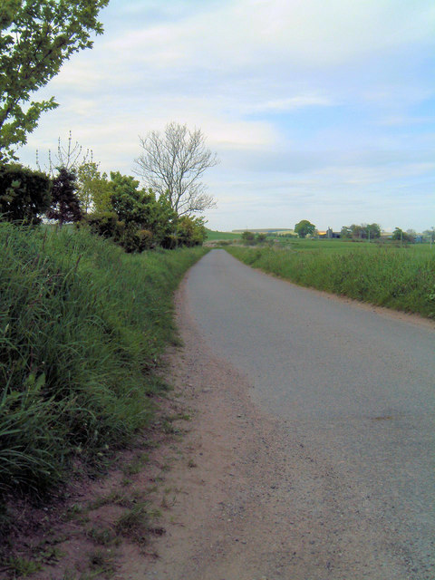 Road near Fernieflatt farm, Kinneff