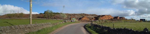 Clochandighter Forest
