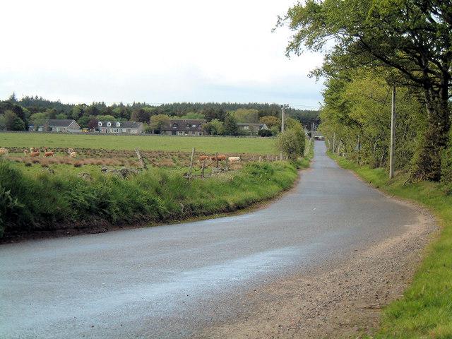 Road to Burnhead