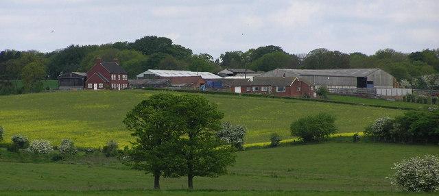 Viewly Hill Farm.
