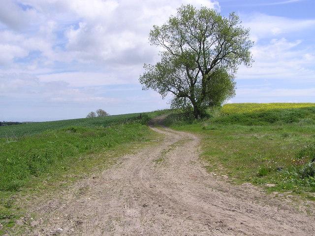 High Grindon : near Deserted Medieval Village