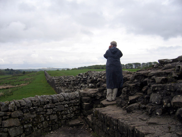 Section of Hadrian's Wall, looking east from Birdoswald