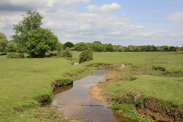Mill Lawn Brook flowing towards Mill Lawn, Burley