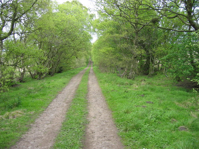 Footpath leading from Park Burn