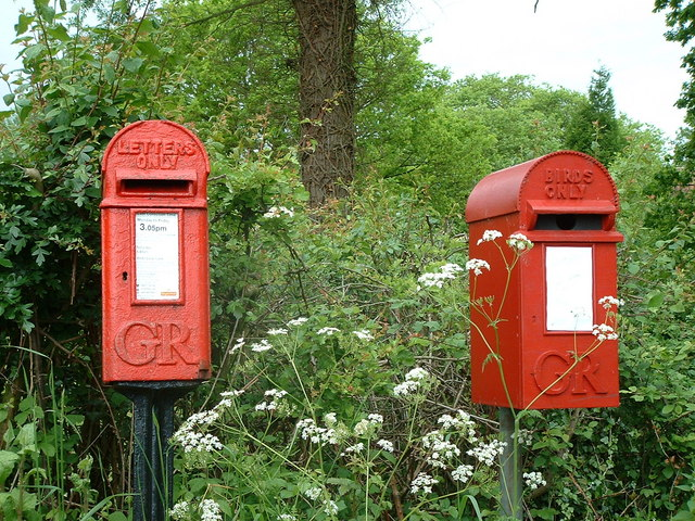 Postbox for letters and bird box