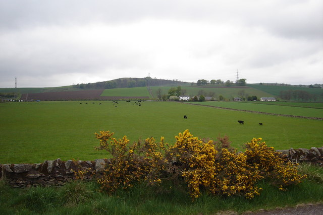 Fields near Memus
