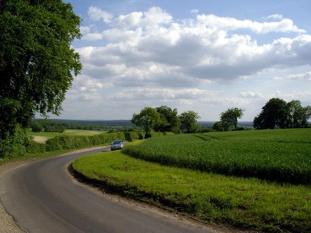 Fields and Furzedown Road