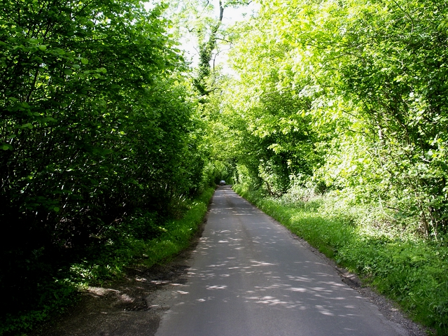 Furzedown Road