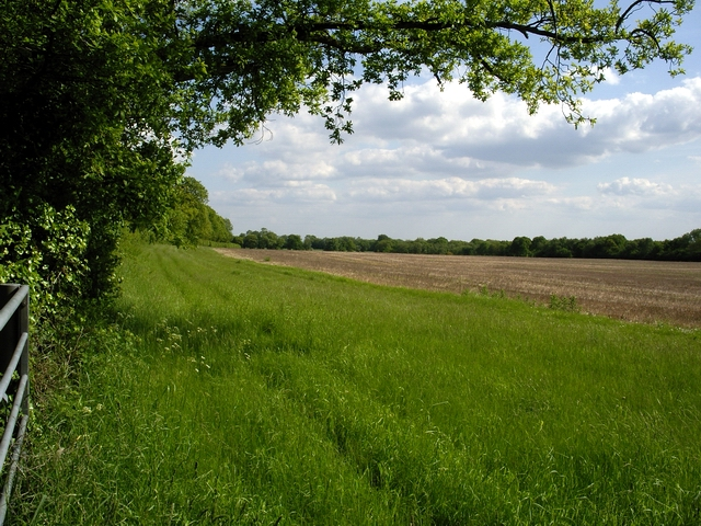 Field to the west of Furzedown Road