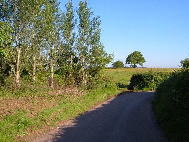 Lane near Rull Farm