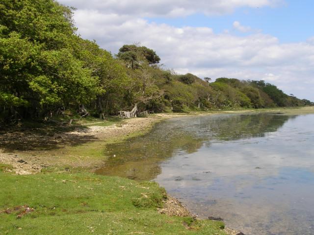 Pylewell Shore