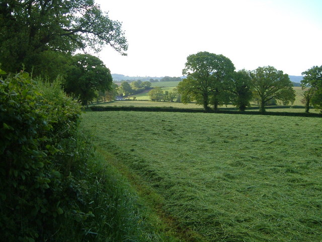 Farmland at Higher Metcombe