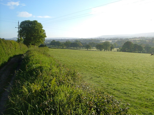 From the green lane between Metcombe and Fluxton