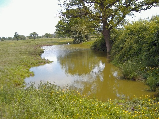Field pond, Rushton