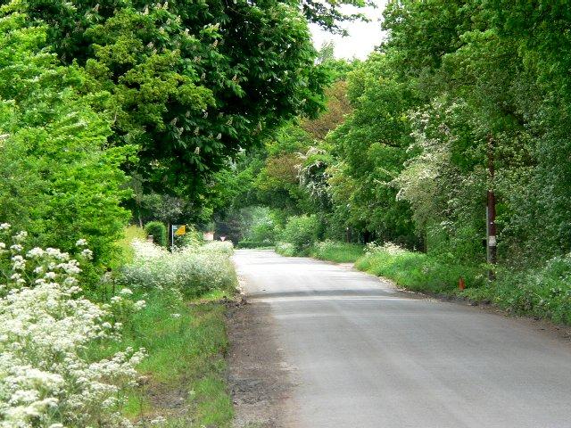 Road to Seaton Common