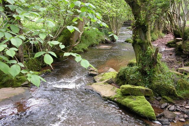 Escley Brook