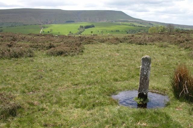 Boundary Stone, Cefn Hill