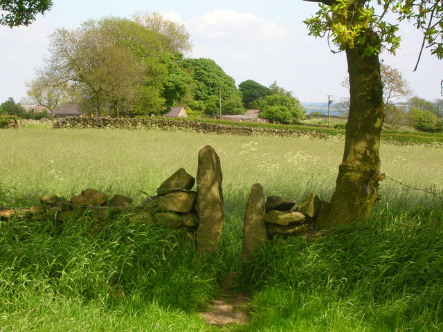 Stile in the shade