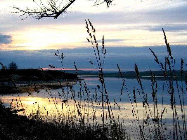 The Ythan Estuary