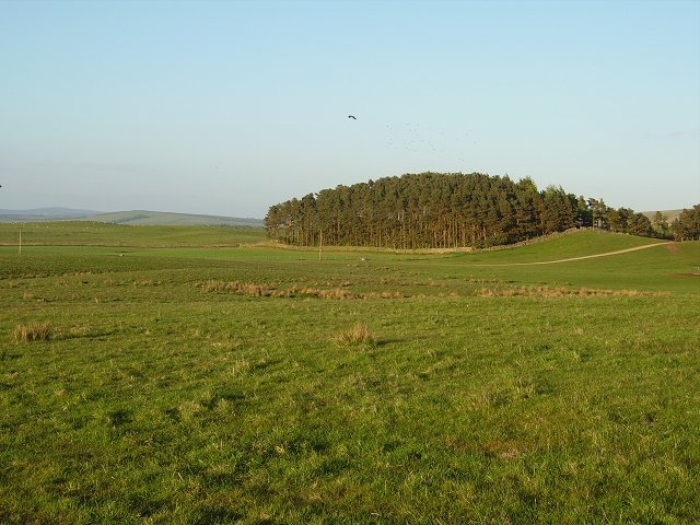 Outerston Hill