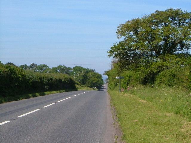 The Roman Road near Cobden