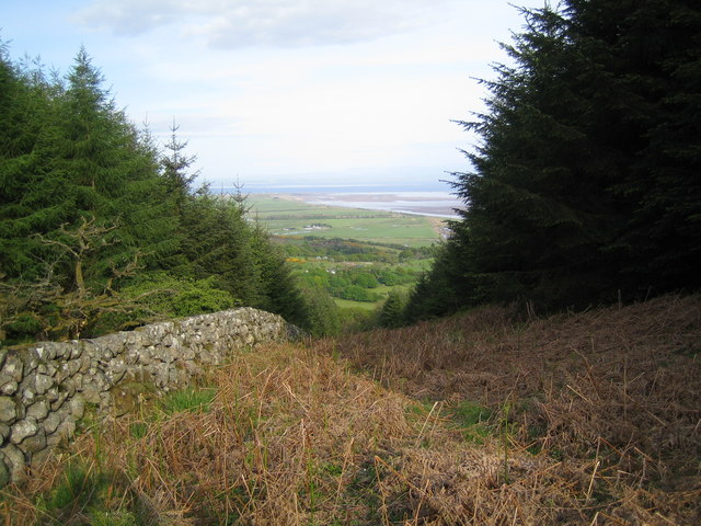 View down the firebreak to the Solway Firth