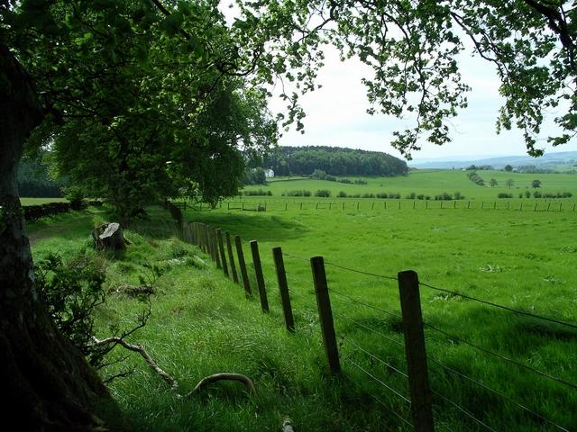 Fields near Burnswark Hill
